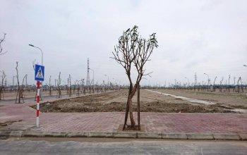 Bán đất liền kề 75m2 khu hồng ngọc dự án tnr đồng văn giá 535 triệu/lô
