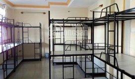 Quận 7, giường tầng kí túc xá cho thuê 650k/ng/tháng