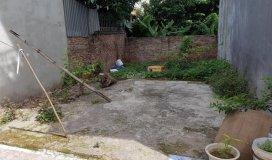 Đất thôn Cam, Cổ Bi 65m2 mặt tiền 7m chỉ 28tr/m2