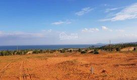 Cần bán 1,6 ha đất thuộc xã hòa thắng, view biển đẹp, giá mềm