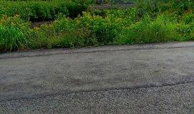 Tôi cần bán lô đất mặt tiền đường Lý Nhơn_Cần Giờ DT: 11000m2 giá:13.2 tỷ còn thương lượng