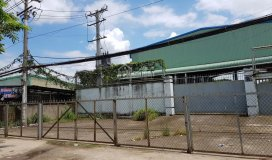 Bán gấp kho xưởng 239.5m2 giá 3 tỷ ở trần văn giàu, bình chánh đường chính 20m lh: