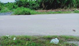 Bán đất mặt tiền đường Nhơn Đức_Phước Lộc DT: 10000m2 Giá:7tr/m2
