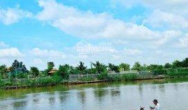 Dự án daimond river-long trường-quận 9-lợi nhuận 12% sau 06 tháng