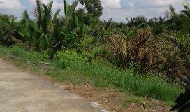Ngay hôm nay giá đất chỉ còn 4 tỷ 500tr/nền ngay đường  Hiệp Phước_Huyện Nhà Bè hẻm TNXP