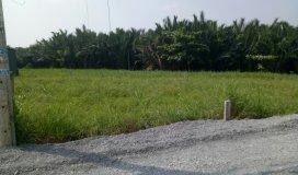 Làm giàu không khó với lô đất DT: 87m2 mặt tiền đường Nguyễn Bình_Nhơn Đức
