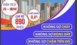 Chào xuân Kỷ Hợi với nhiều ưu đâĩ cho khách hàng tại chung cư Booyoung Vina Mỗ Lao, Hà Đông, Hà Nội.