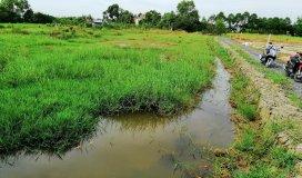 Bán 565m2 đất vườn ấp Lộc Tiền, xẫ Mỹ Lộc, hẻm xi măng an ninh