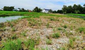 Cần bán 456m2 đất vườn xã Phước lâm Cách mặt tiền đường DH 20 400m