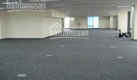 Cho thuê văn phòng, spa, thẩm mỹ 300m2, 500m2, 1000m2 phố trần thái tông