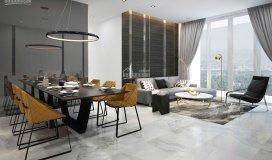 Chính chủ bán gấp căn hộ sala 2pn, 2wc giá tốt nhất thị trường, view hồ bơi 5.5 tỷ. lh: