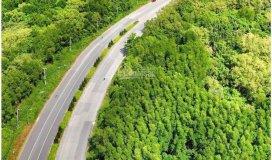 Bán 2,6 hecta đất mặt tiền đường lý nhơn giá chỉ 780 nghìn/m2