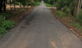 Bán đất giá rẻ thuộc xã Tam Phước, huyện Long Điền, BRVT