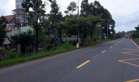 đất gần khu tái định cư sân bay long thành, shr. 380tr/ 200m2